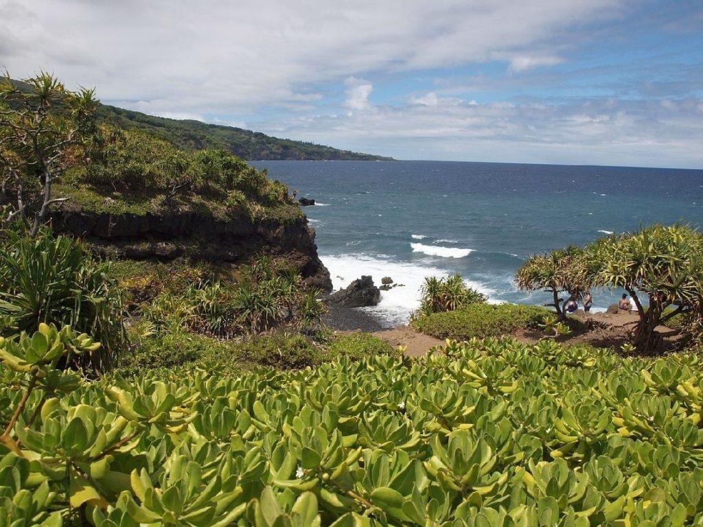 Maui Insel Hawaii